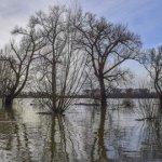 Overstroming 2